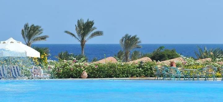 Royal Brayka Beach Resort Marsa Alam Egypt Season Deals From 121
